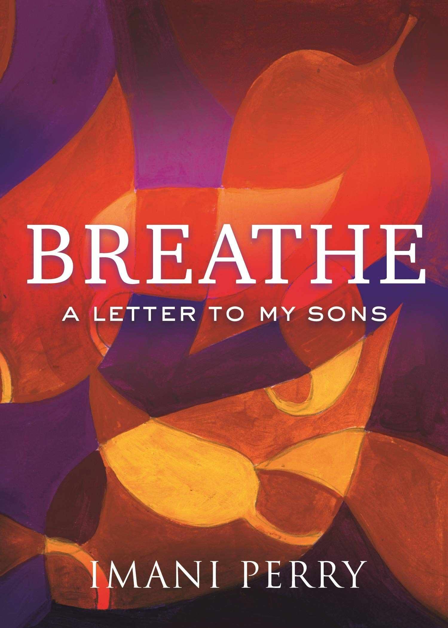 Breathe: A Letter to My Sons: Amazon.co.uk: Imani Perry ...